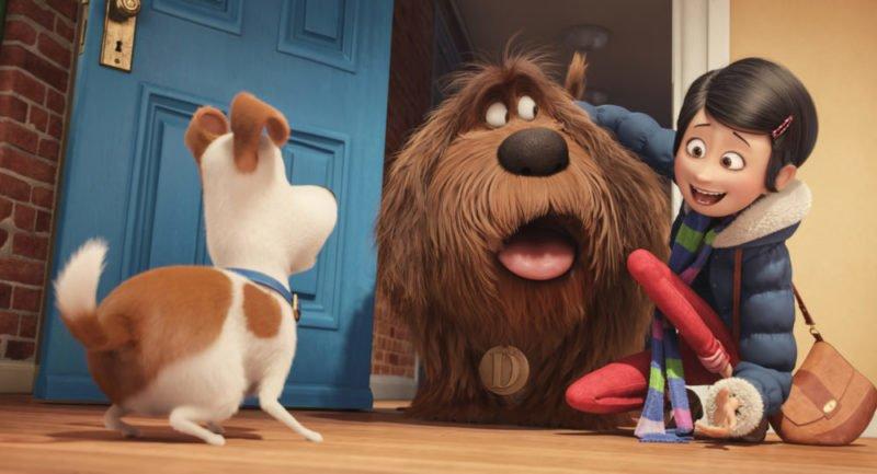 Max wird dem neuen Hund Duke vorgestellt in Pets