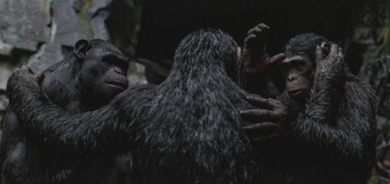 Caesar (Andy Serkis) und seine Anhänger umarmen sich in Planet der Affen Survival