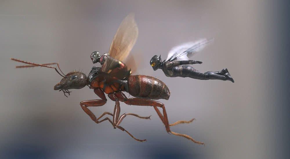 Ant-Man reitet auf einer fliegenden Ameise neben ihm fliegt the Wasp im Film Ant-Man and the Wasp