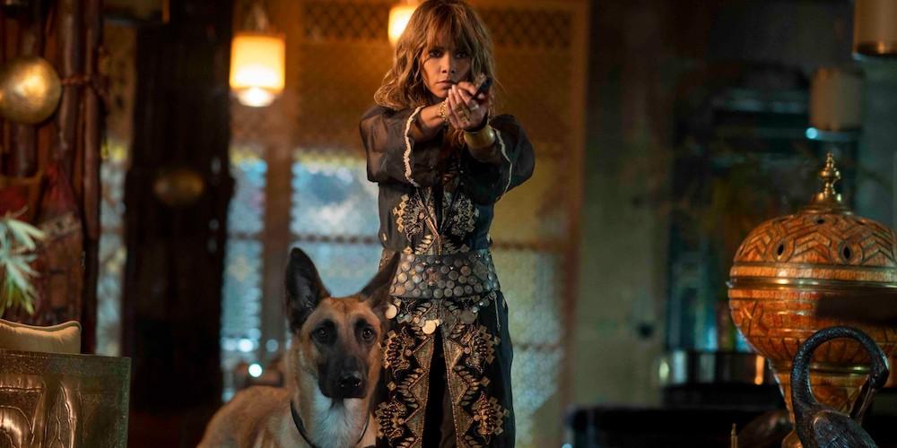 Halle Berry und Hunde in einem Szenenbild aus John Wick: Kapitel 3