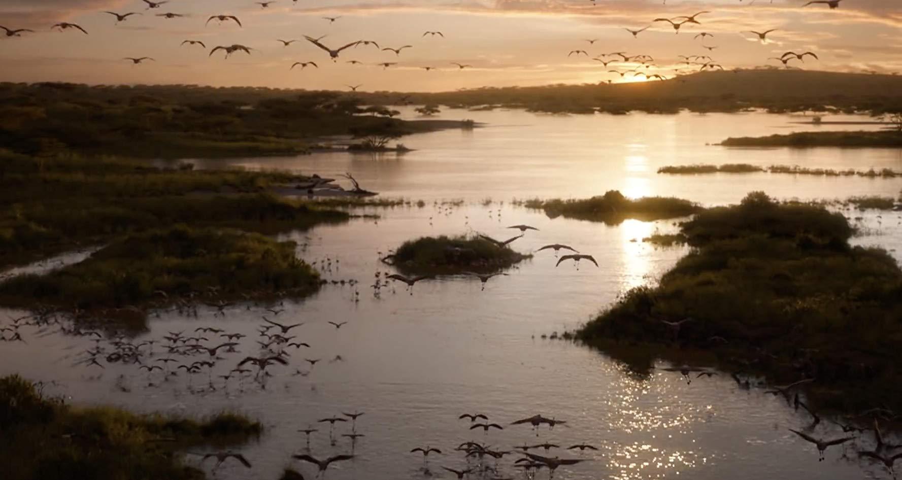 Sonnenaufgang im geweihten Land über einem See