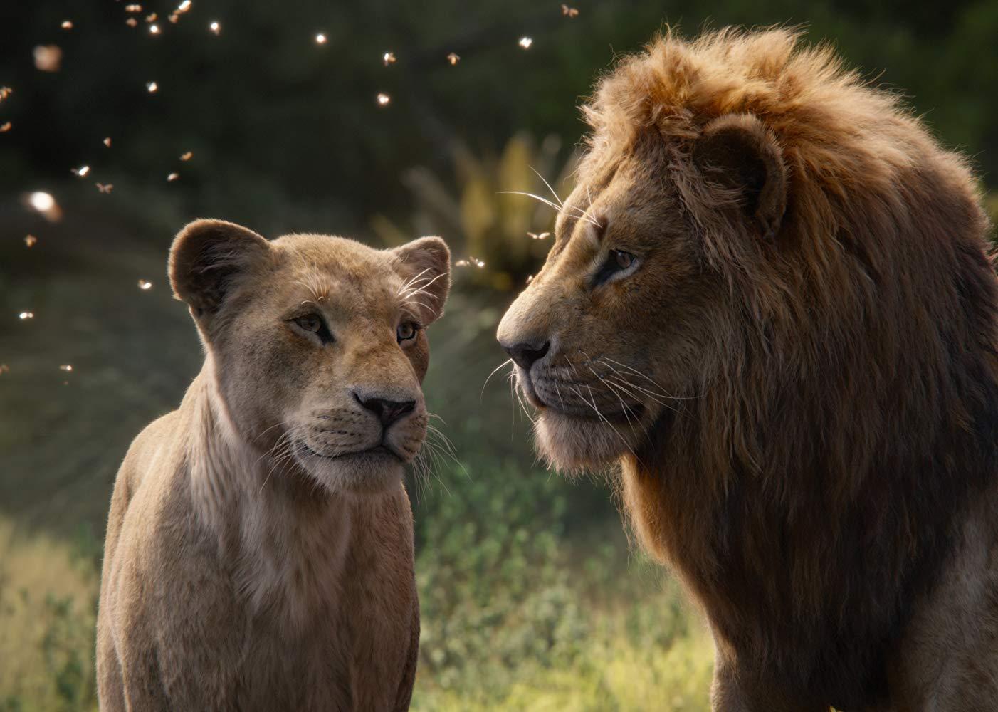 Nala (Beyoncé) und Simba (Donald Glover) stehen auf einer Wiese und schauen sich an